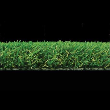 regency grass